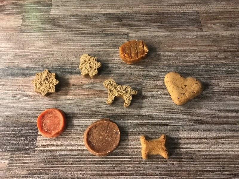 Hunde Adventskalender Test